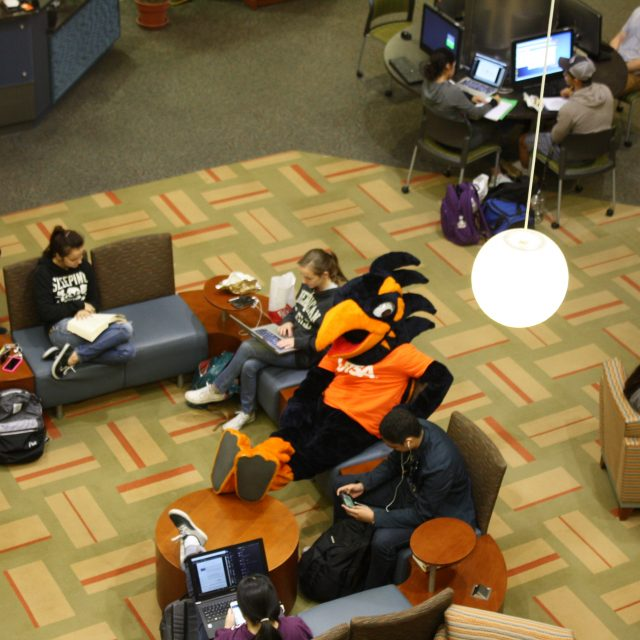Rowdy sitting among students in the library